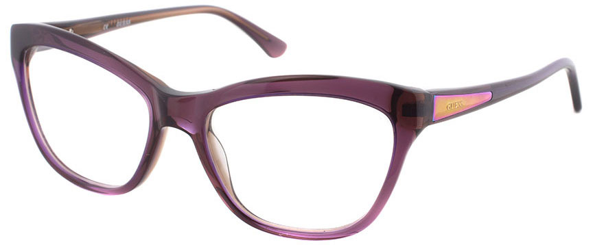 Glasses Frames You Can Try On At Home : Guess GU 2463 PURBRN - square frames - Prescription Glasses
